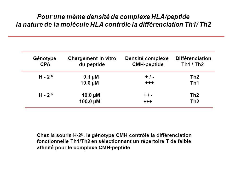 Pour une même densité de complexe HLA/peptide la nature de la molécule HLA contrôle la différenciation Th1/ Th2 Génotype Chargement in vitro Densité c