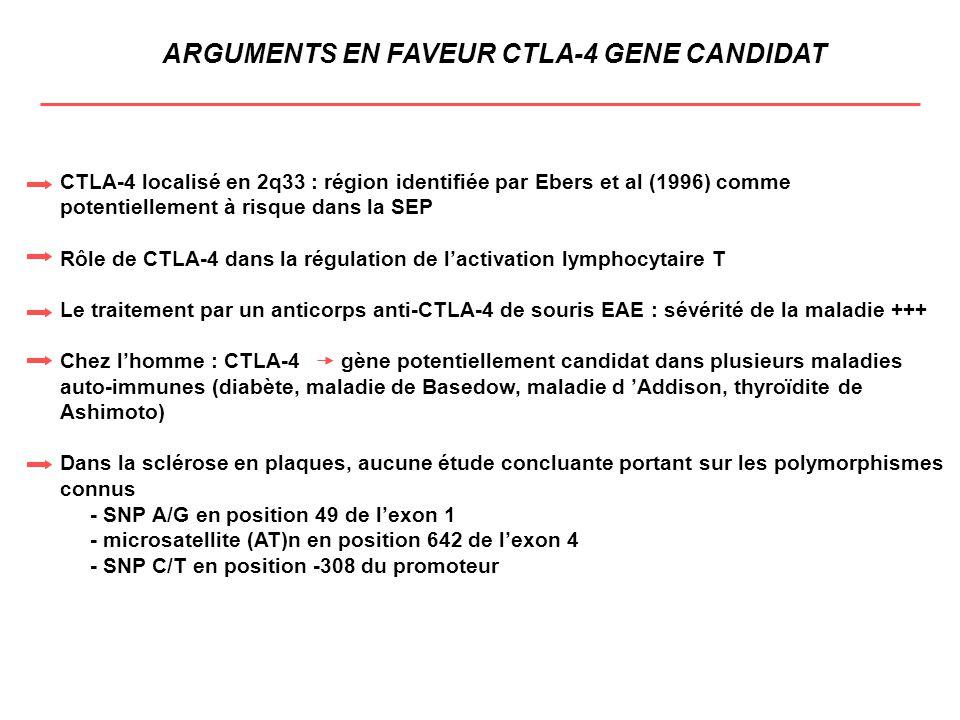 ARGUMENTS EN FAVEUR CTLA-4 GENE CANDIDAT CTLA-4 localisé en 2q33 : région identifiée par Ebers et al (1996) comme potentiellement à risque dans la SEP