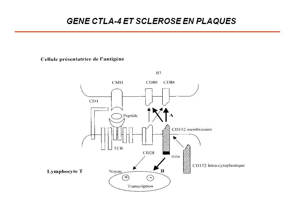 GENE CTLA-4 ET SCLEROSE EN PLAQUES