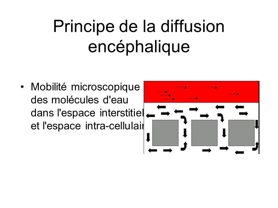 Principe de la diffusion encéphalique Mobilité microscopique des molécules d'eau dans l'espace interstitiel et l'espace intra-cellulaire.