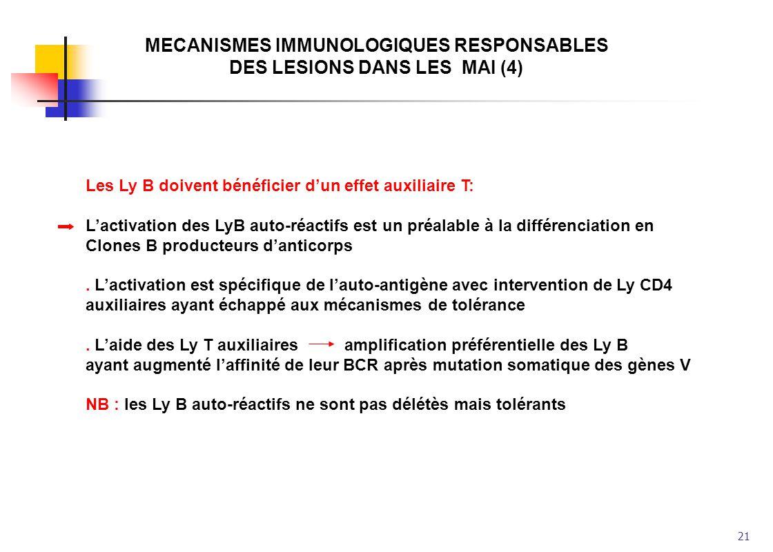 21 MECANISMES IMMUNOLOGIQUES RESPONSABLES DES LESIONS DANS LES MAI (4) Les Ly B doivent bénéficier dun effet auxiliaire T: Lactivation des LyB auto-ré