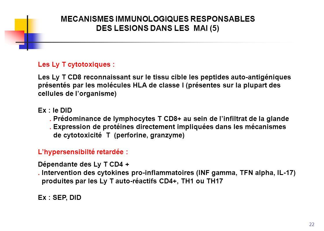 22 MECANISMES IMMUNOLOGIQUES RESPONSABLES DES LESIONS DANS LES MAI (5) Les Ly T cytotoxiques : Les Ly T CD8 reconnaissant sur le tissu cible les pepti
