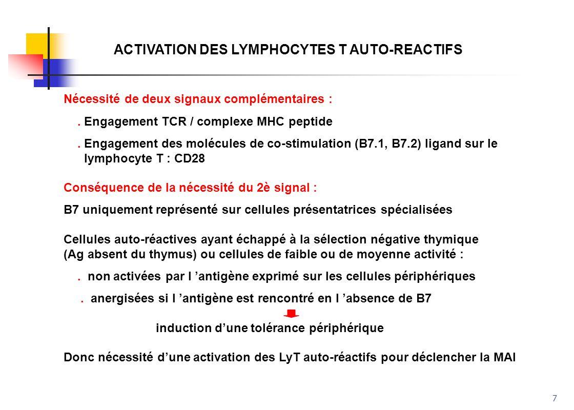 7 ACTIVATION DES LYMPHOCYTES T AUTO-REACTIFS Nécessité de deux signaux complémentaires :. Engagement TCR / complexe MHC peptide. Engagement des molécu