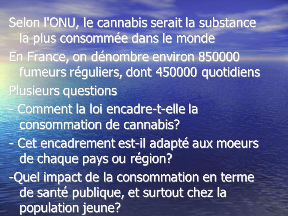 Selon l'ONU, le cannabis serait la substance la plus consommée dans le monde En France, on dénombre environ 850000 fumeurs réguliers, dont 450000 quot