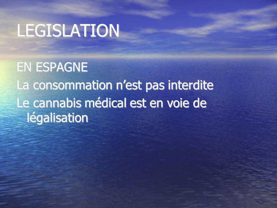 LEGISLATION EN ESPAGNE La consommation nest pas interdite Le cannabis médical est en voie de légalisation
