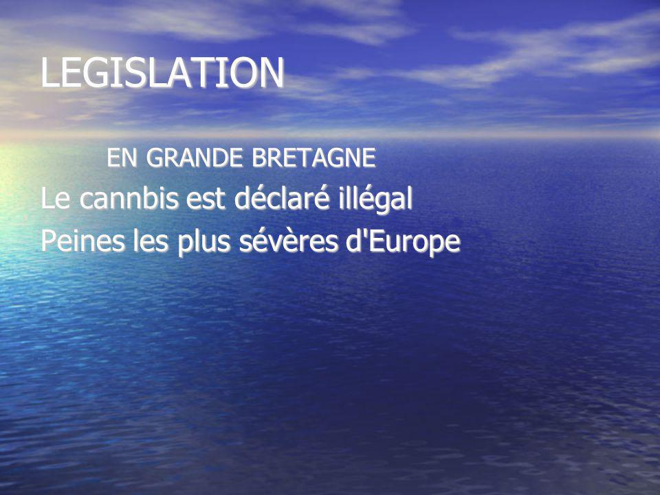 LEGISLATION EN GRANDE BRETAGNE Le cannbis est déclaré illégal Peines les plus sévères d'Europe