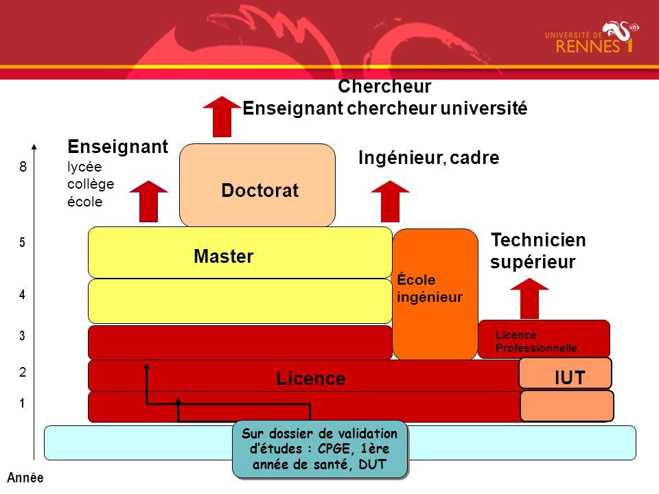 Bac Doctorat École ingénieur Master Licence Professionnelle Chercheur Enseignant chercheur université Enseignant lycée collège école 1 2 3 4 5 Année 8
