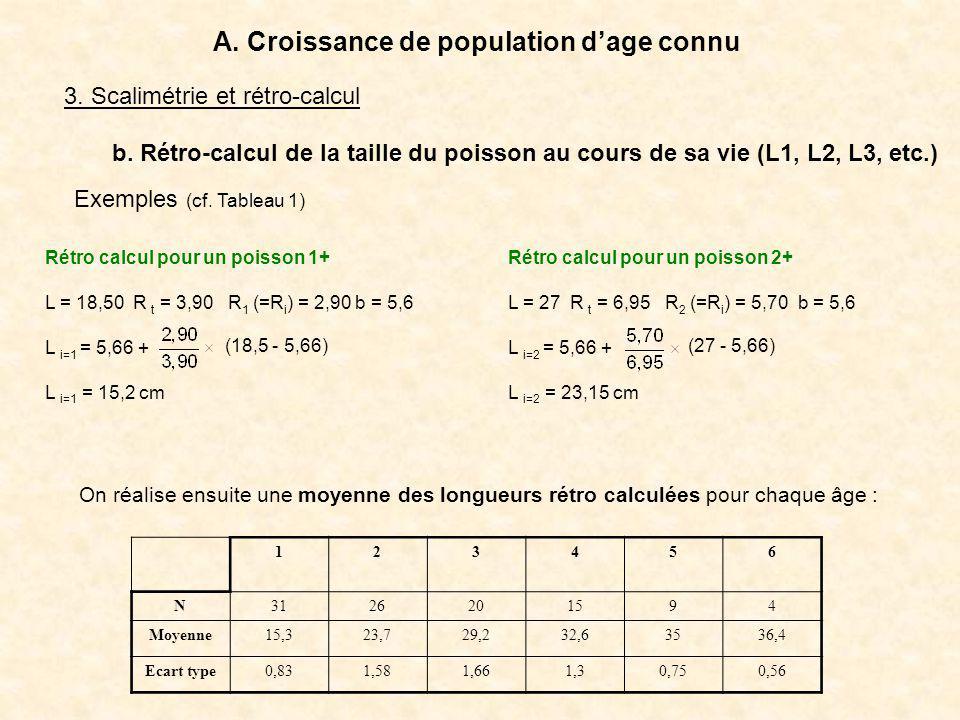 Rétro calcul pour un poisson 1+ L = 18,50 R t = 3,90 R 1 (=R i ) = 2,90 b = 5,6 L i=1 = 5,66 + L i=1 = 15,2 cm 3. Scalimétrie et rétro-calcul A. Crois