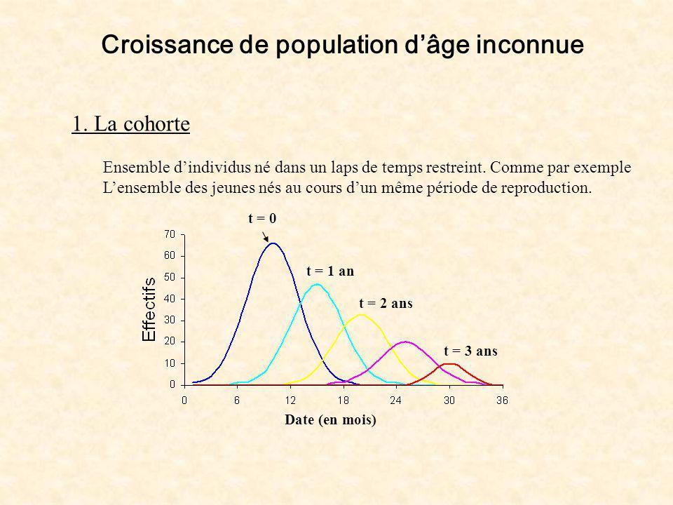 Croissance de population dâge inconnue 1. La cohorte Ensemble dindividus né dans un laps de temps restreint. Comme par exemple Lensemble des jeunes né