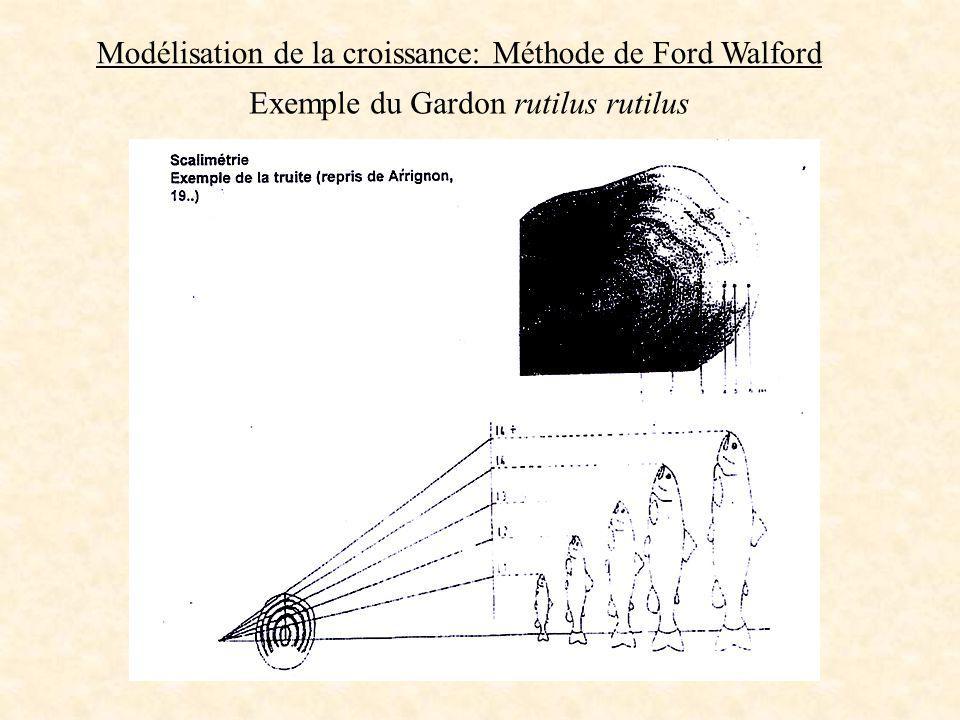 Modélisation de la croissance: Méthode de Ford Walford Exemple du Gardon rutilus rutilus