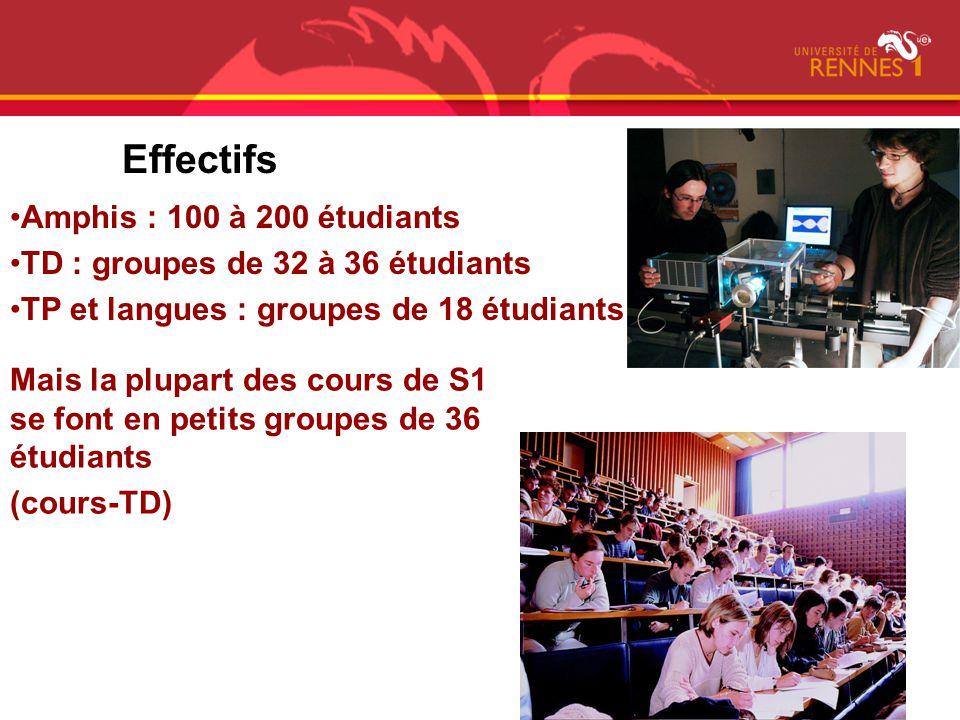 Effectifs Amphis : 100 à 200 étudiants TD : groupes de 32 à 36 étudiants TP et langues : groupes de 18 étudiants Mais la plupart des cours de S1 se fo