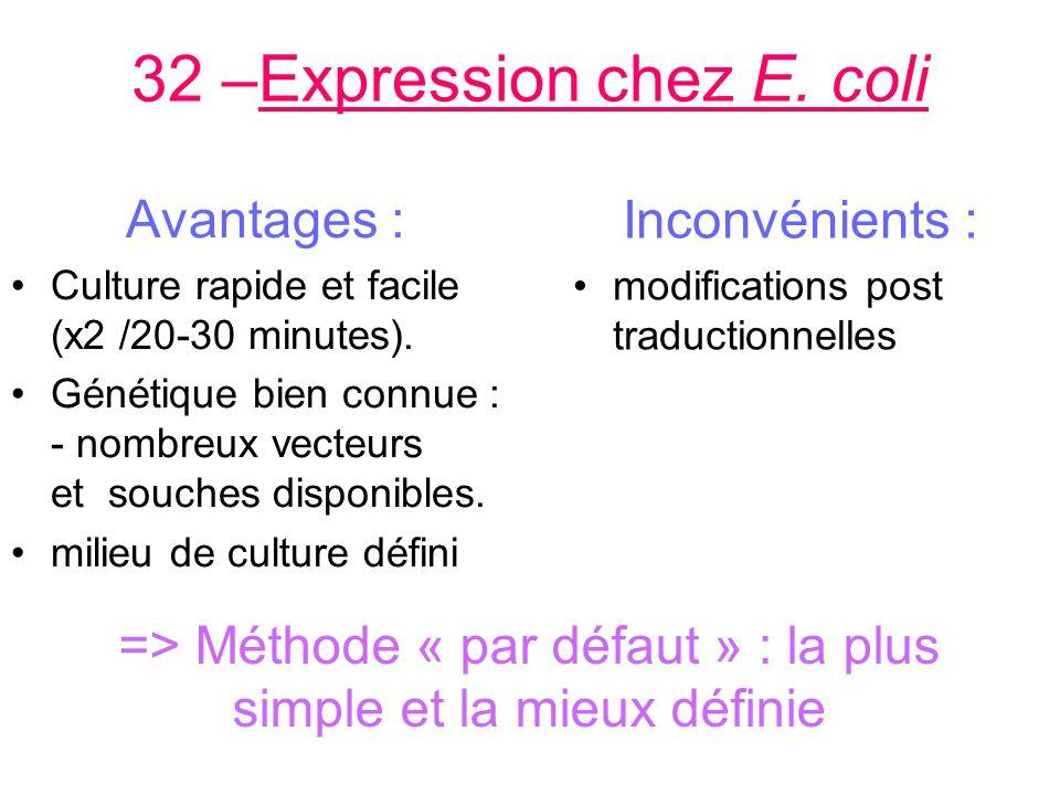 32 –Expression chez E.coli Avantages : Culture rapide et facile (x2 /20-30 minutes).