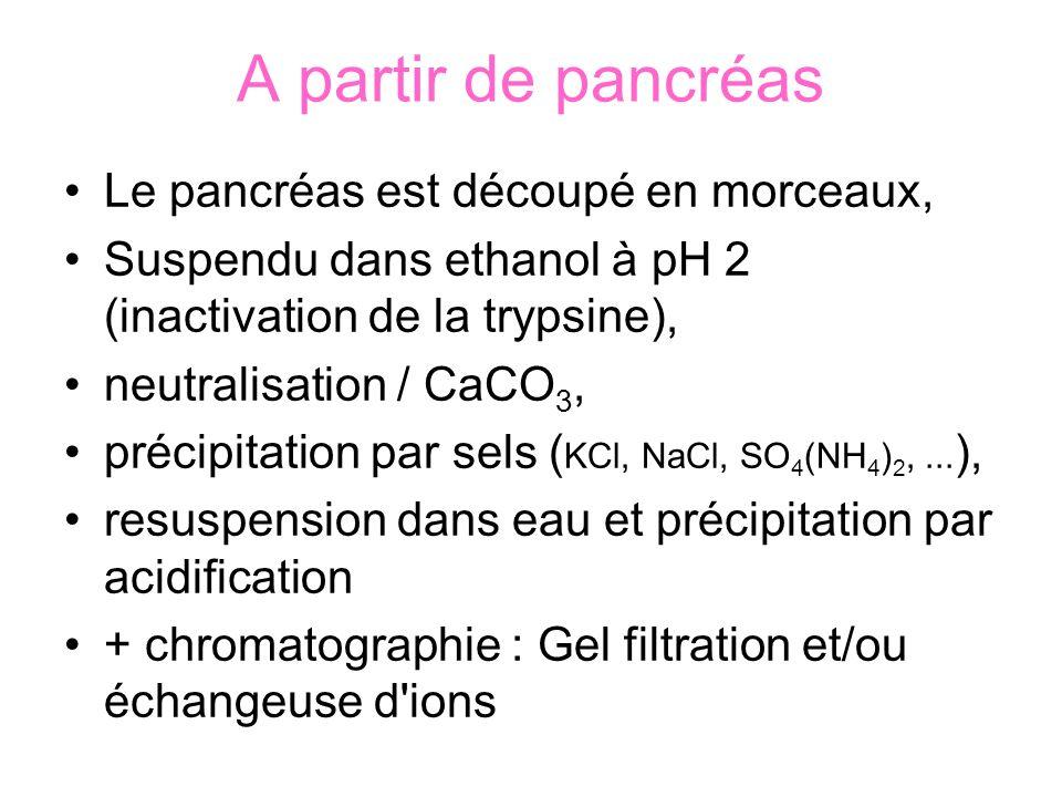 A partir de pancréas Le pancréas est découpé en morceaux, Suspendu dans ethanol à pH 2 (inactivation de la trypsine), neutralisation / CaCO 3, précipitation par sels ( KCl, NaCl, SO 4 (NH 4 ) 2,...