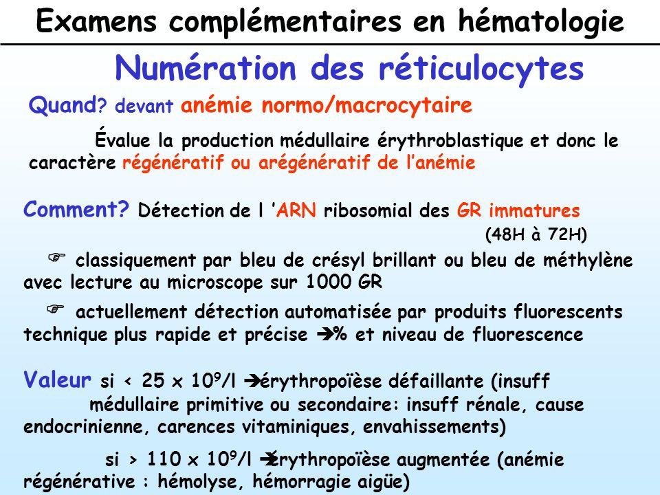 Examens complémentaires en hématologie Numération des réticulocytes Quand .