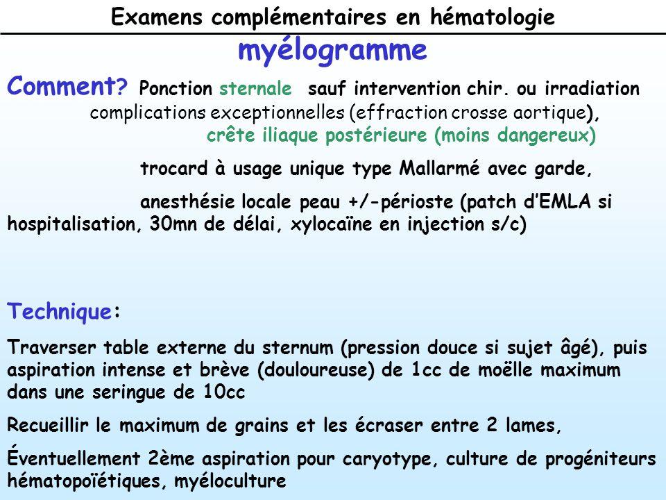 Examens complémentaires en hématologie myélogramme Comment .