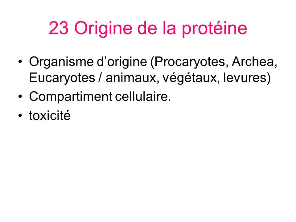 23 Origine de la protéine Organisme dorigine (Procaryotes, Archea, Eucaryotes / animaux, végétaux, levures) Compartiment cellulaire. toxicité