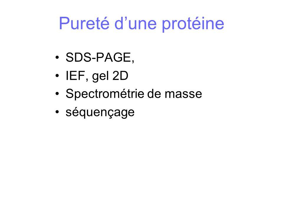Pureté dune protéine SDS-PAGE, IEF, gel 2D Spectrométrie de masse séquençage
