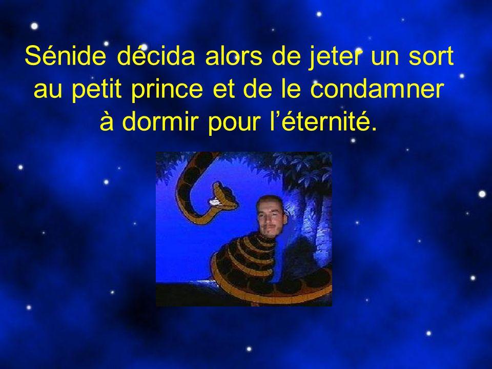 La sorcière était en train de prononcer la formule magique qui rendait sa malédiction définitive quand elle fut dérangée par larrivée du Prince JR.