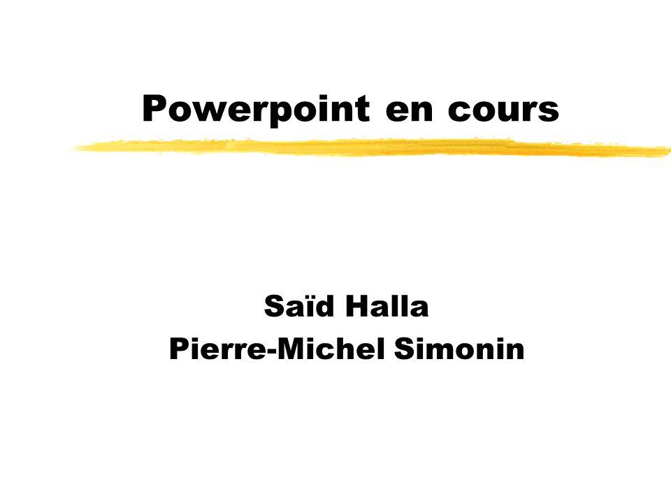 Powerpoint en cours Saïd Halla Pierre-Michel Simonin