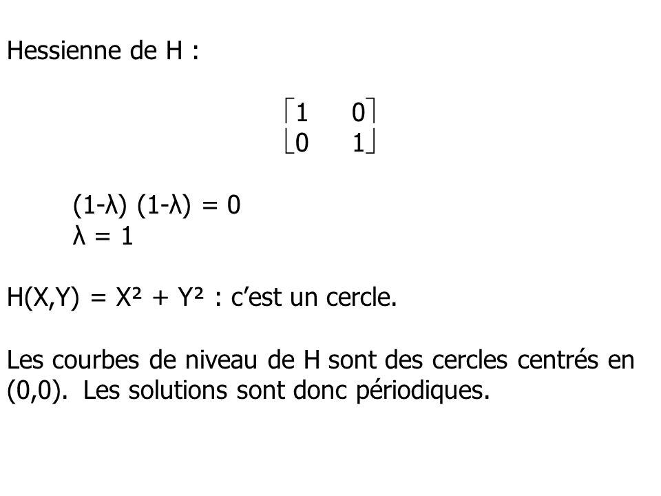 Hessienne de H : 10 01 (1-λ) (1-λ) = 0 λ = 1 H(X,Y) = X² + Y² : cest un cercle. Les courbes de niveau de H sont des cercles centrés en (0,0). Les solu