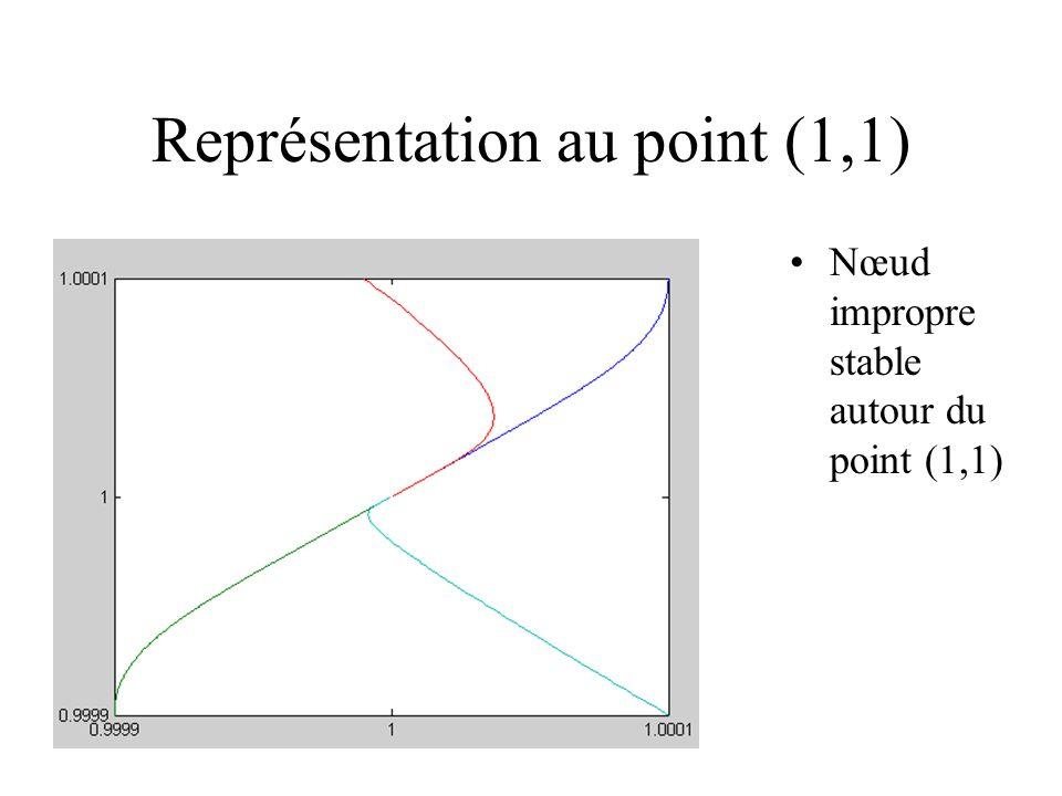 Représentation au point (1,1) Nœud impropre stable autour du point (1,1)