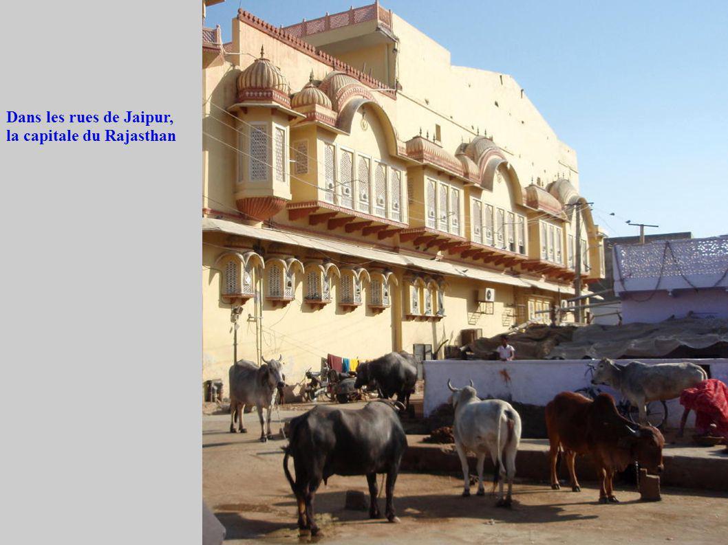 Dans les rues de Jaipur, la capitale du Rajasthan