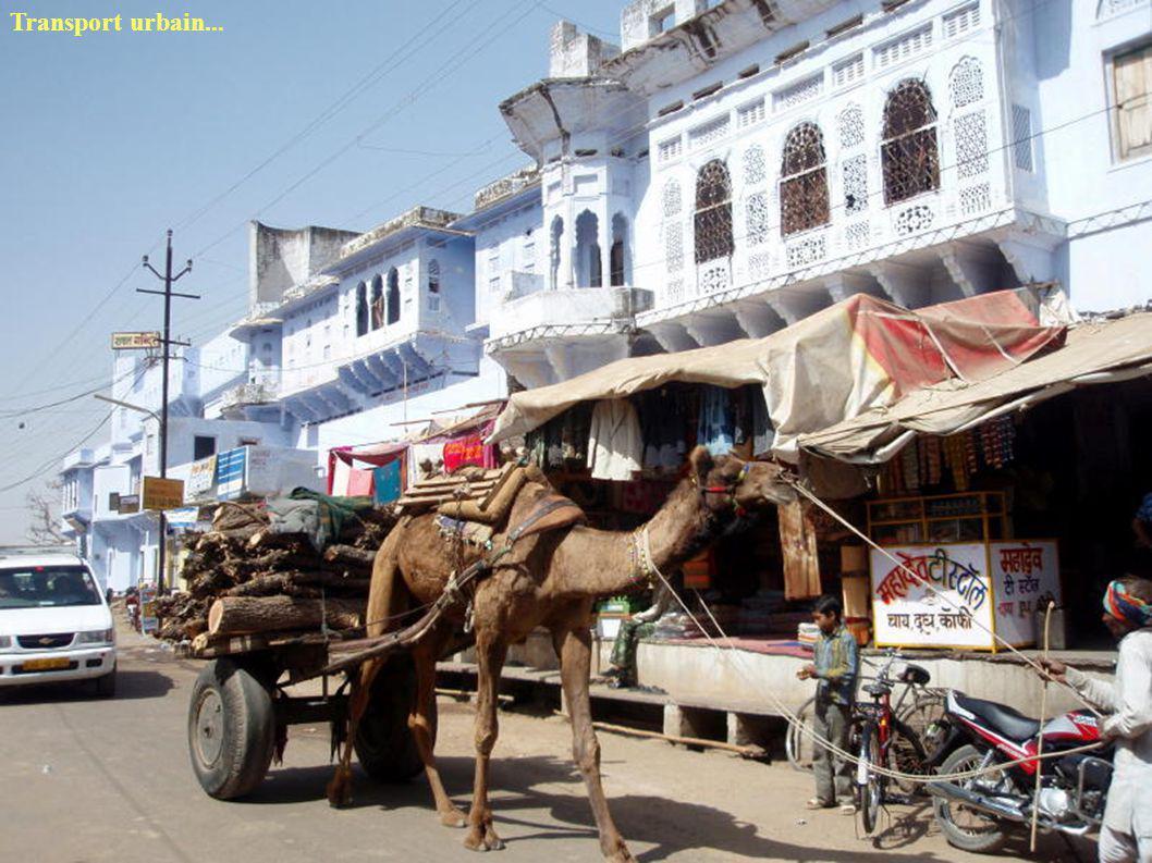 Transport urbain...