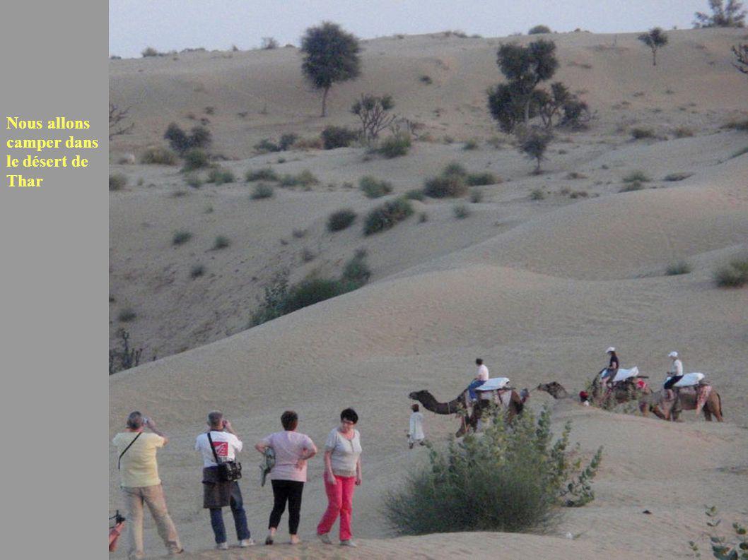Nous allons camper dans le désert de Thar