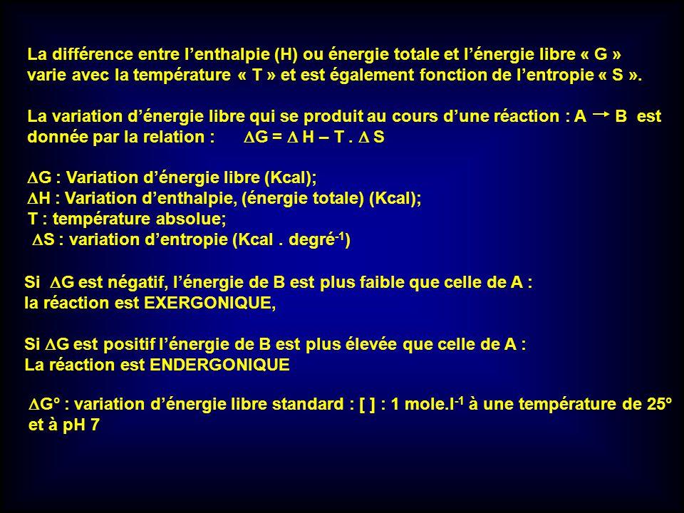 La différence entre lenthalpie (H) ou énergie totale et lénergie libre « G » varie avec la température « T » et est également fonction de lentropie «