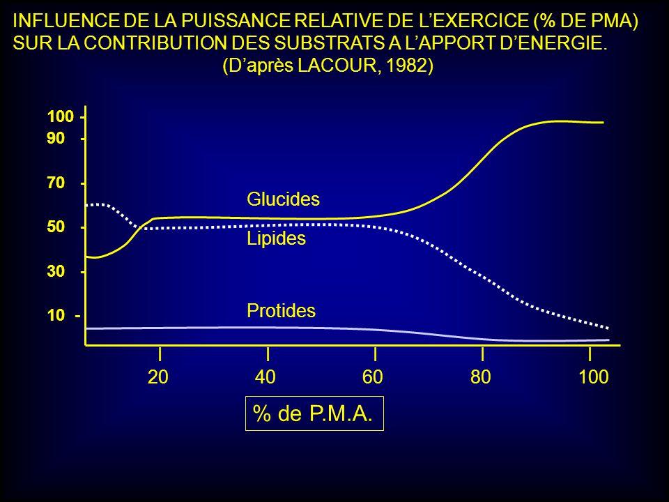 100 - 90- 70- 50- 30- 10 - Protides Lipides Glucides I I I I I 20 40 60 80 100 % de P.M.A. INFLUENCE DE LA PUISSANCE RELATIVE DE LEXERCICE (% DE PMA)