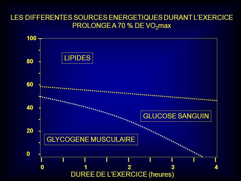 LIPIDES GLUCOSE SANGUIN GLYCOGENE MUSCULAIRE 100 – - 80- - 60- - 40- - 20- - 0 - I I I I I I I I I 0 1 2 3 4 DUREE DE LEXERCICE (heures) LES DIFFERENT