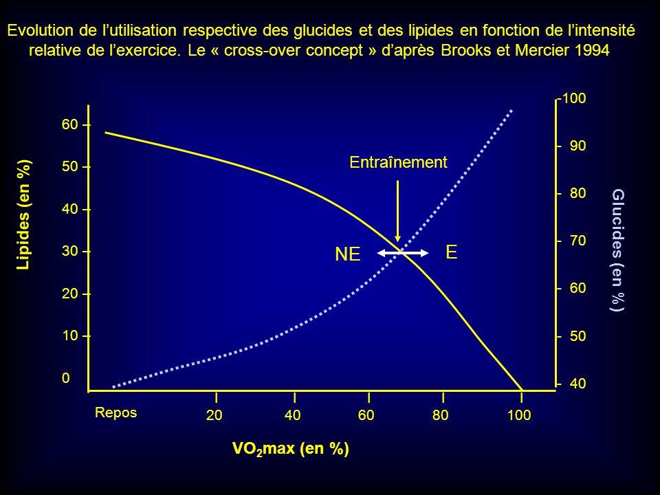 Lipides (en %) 60 – 50 – 40 – 30 – 20 – 10 – 0 Repos I I I I I 20 40 60 80 100 VO 2 max (en %) Glucides (en %) -100 - 90 - 80 - 70 - 60 - 50 - 40 Entr