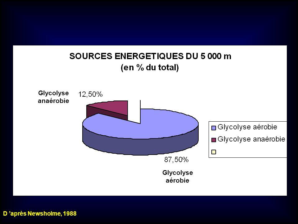 Glycolyse anaérobie Glycolyse aérobie D après Newsholme, 1988