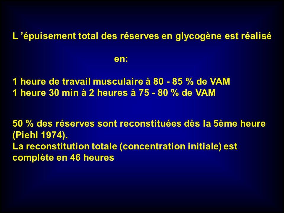 L épuisement total des réserves en glycogène est réalisé en: 1 heure de travail musculaire à 80 - 85 % de VAM 1 heure 30 min à 2 heures à 75 - 80 % de