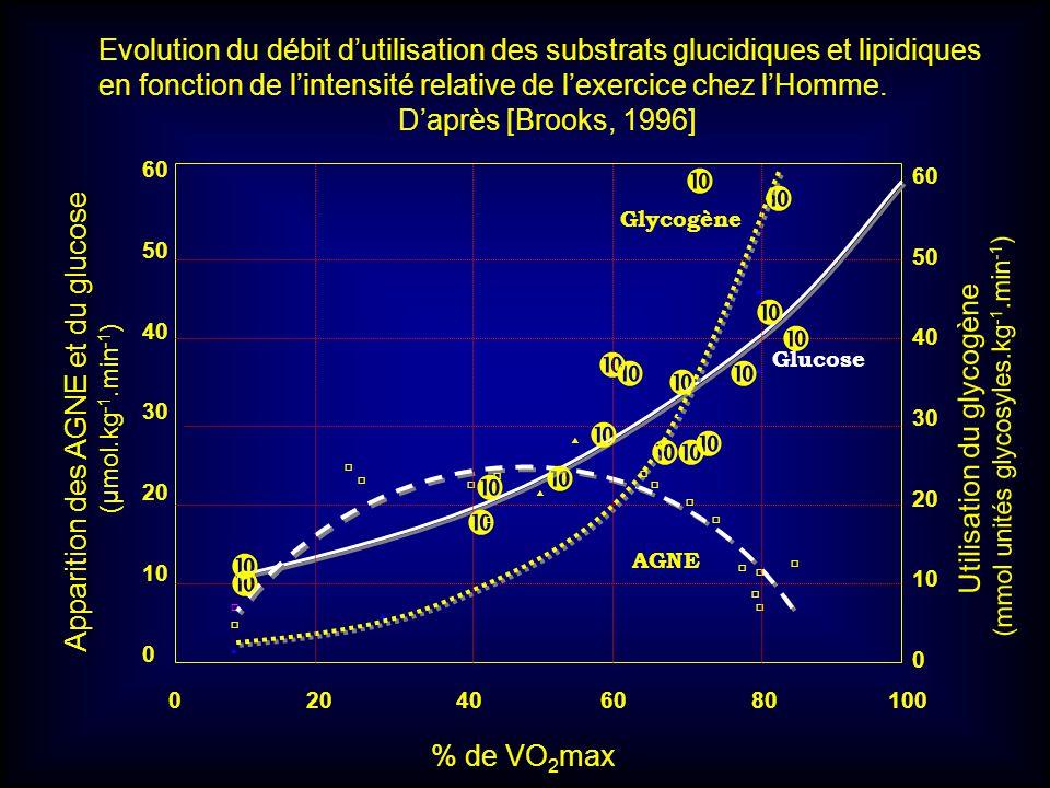 60 50 40 30 20 10 0 0 20 40 60 80 100 60 50 40 30 20 10 0 Glycogène Glucose AGNE % de VO 2 max Apparition des AGNE et du glucose (µmol.kg -1.min -1 )