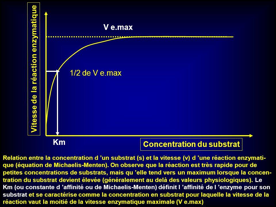 Relation entre la concentration d un substrat (s) et la vitesse (v) d une réaction enzymati- que (équation de Michaelis-Menten). On observe que la réa