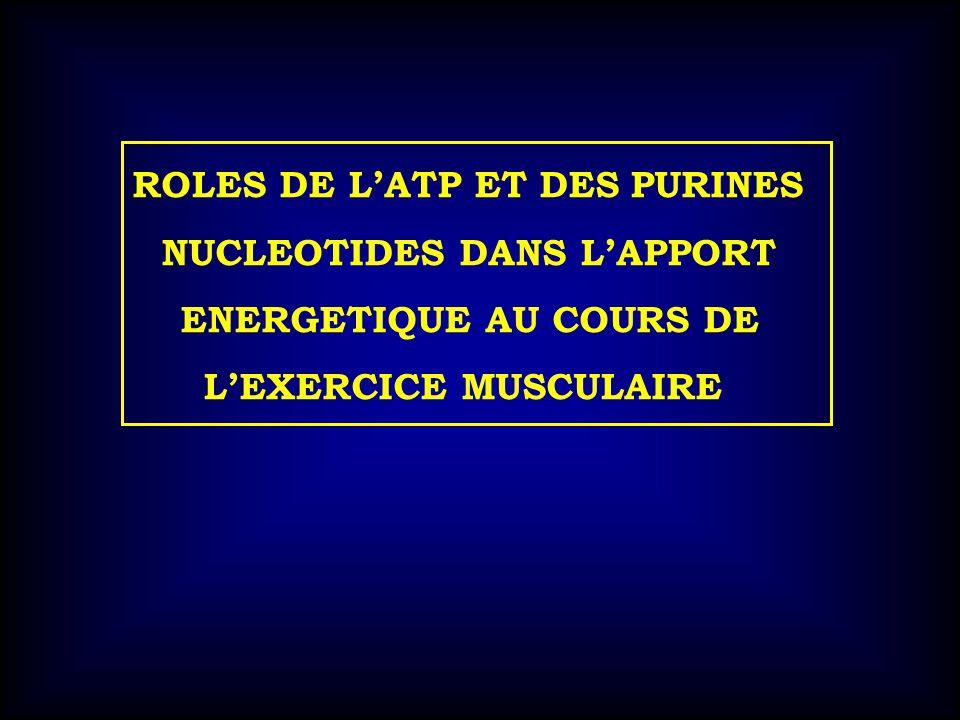 ROLES DE LATP ET DES PURINES NUCLEOTIDES DANS LAPPORT ENERGETIQUE AU COURS DE LEXERCICE MUSCULAIRE