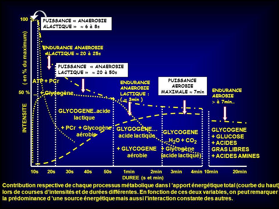 100 % 50 % _ 10s 20s 30s 40s 50s 1min 2min 3min 4min 10min 20min DUREE (s et min) PUISSANCE « ANAEROBIE ALACTIQUE » 6 à 8s PUISSANCE « ANAEROBIE LACTI