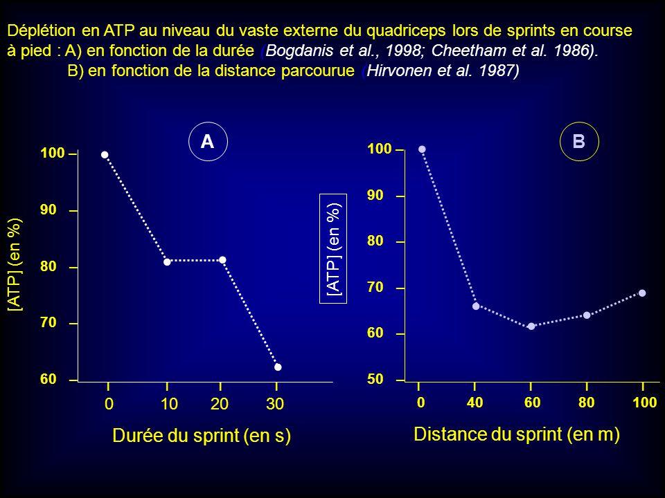 100 – 90 – 80 – 70 – 60 – 100 – 90 – 80 – 70 – 60 – 50 – I I I I 0 10 20 30 [ATP] (en %) I I I I I 0 40 60 80 100 AB Durée du sprint (en s) Distance d