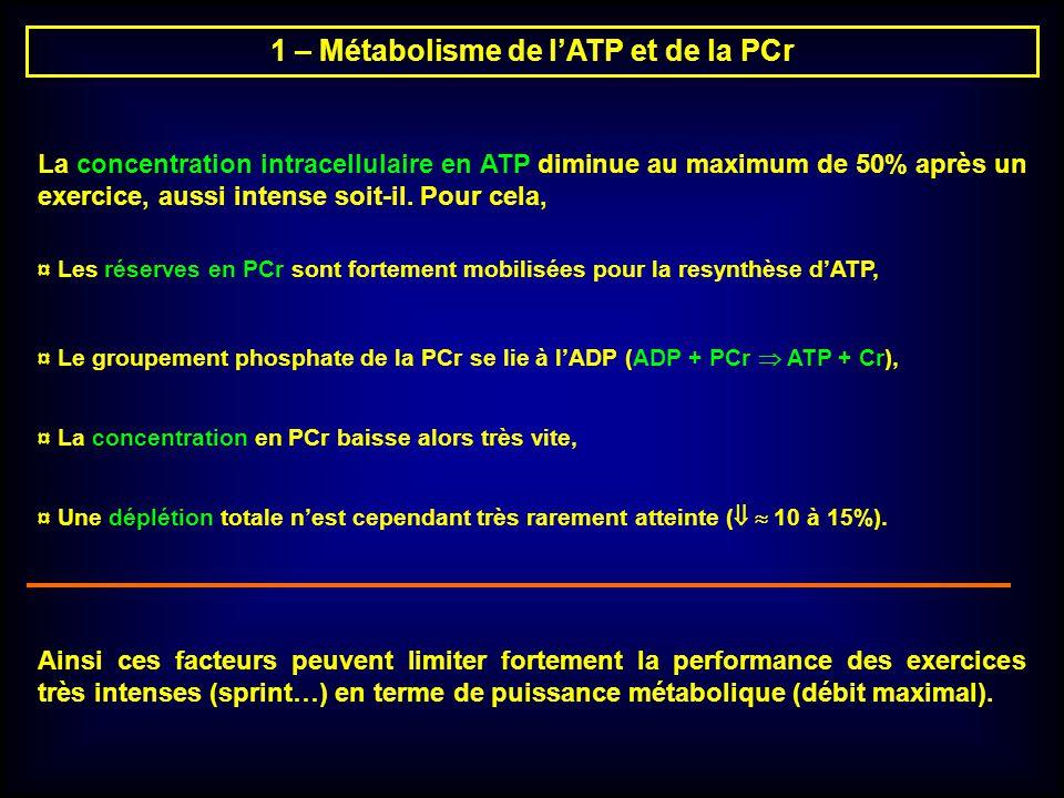 1 – Métabolisme de lATP et de la PCr La concentration intracellulaire en ATP diminue au maximum de 50% après un exercice, aussi intense soit-il. Pour