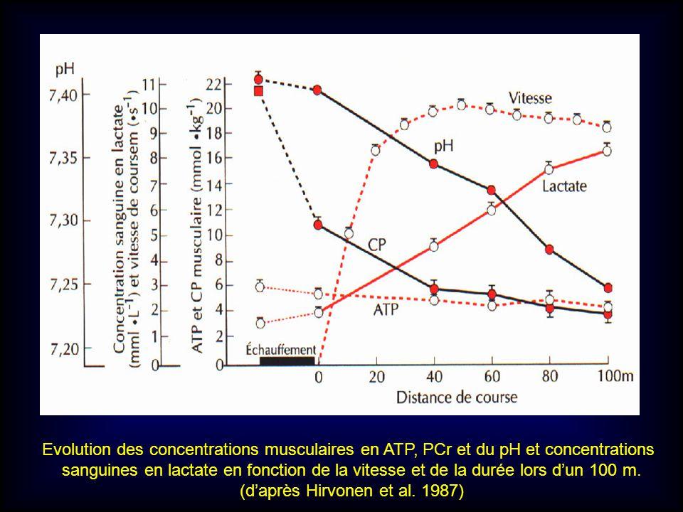 Evolution des concentrations musculaires en ATP, PCr et du pH et concentrations sanguines en lactate en fonction de la vitesse et de la durée lors dun