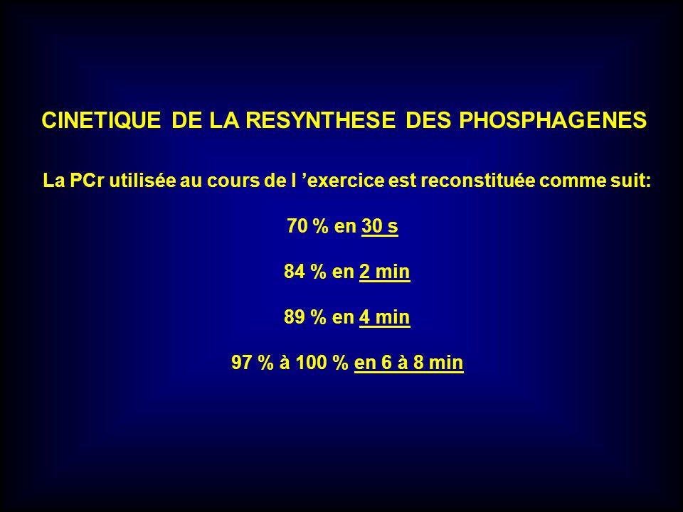 CINETIQUE DE LA RESYNTHESE DES PHOSPHAGENES La PCr utilisée au cours de l exercice est reconstituée comme suit: 70 % en 30 s 84 % en 2 min 89 % en 4 m