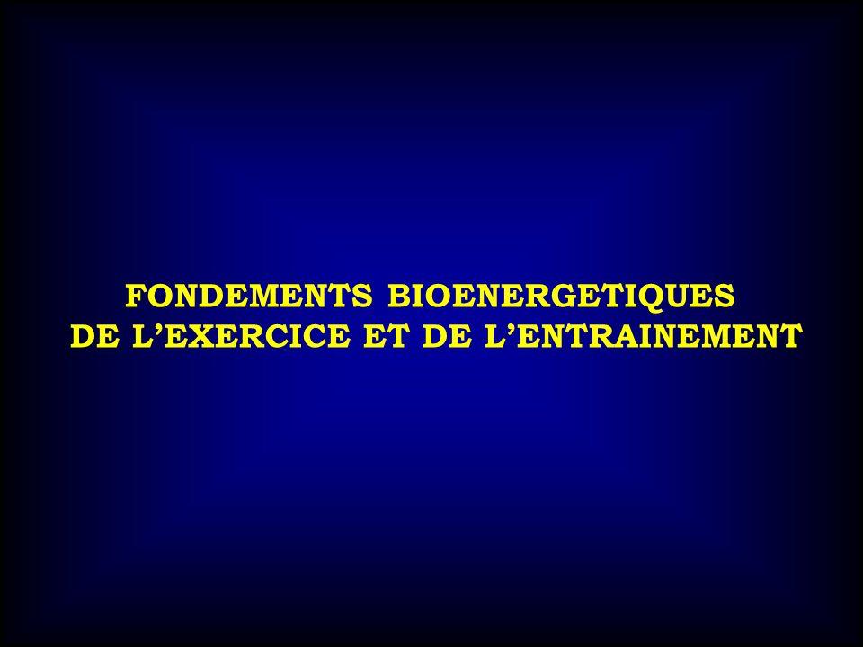 FONDEMENTS BIOENERGETIQUES DE LEXERCICE ET DE LENTRAINEMENT