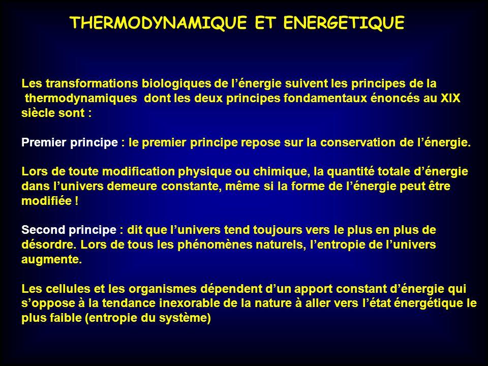 THERMODYNAMIQUE ET ENERGETIQUE Les transformations biologiques de lénergie suivent les principes de la thermodynamiques dont les deux principes fondam