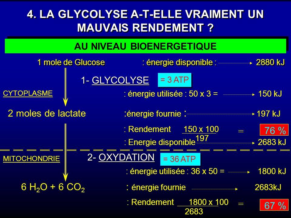 4. LA GLYCOLYSE A-T-ELLE VRAIMENT UN MAUVAIS RENDEMENT ? AU NIVEAU BIOENERGETIQUE 1 mole de Glucose : énergie disponible : 2880 kJ 1 mole de Glucose :