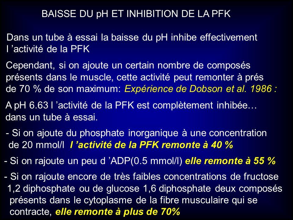 BAISSE DU pH ET INHIBITION DE LA PFK Dans un tube à essai la baisse du pH inhibe effectivement l activité de la PFK Cependant, si on ajoute un certain
