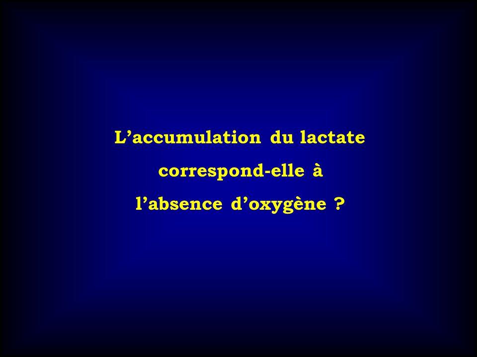 Laccumulation du lactate correspond-elle à labsence doxygène ?