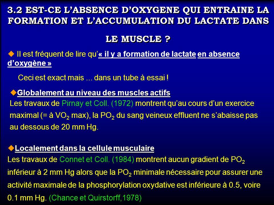 3.2 EST-CE LABSENCE DOXYGENE QUI ENTRAINE LA FORMATION ET LACCUMULATION DU LACTATE DANS LE MUSCLE ? uLocalement dans la cellule musculaire Les travaux