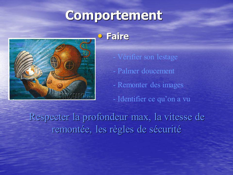 Comportement Faire Faire - Vérifier son lestage - Palmer doucement - Remonter des images - Identifier ce quon a vu Respecter la profondeur max, la vit