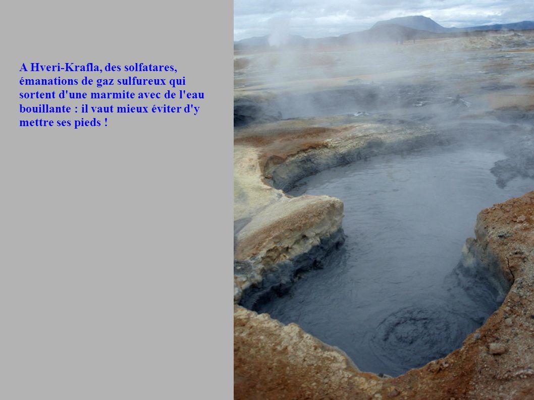 A Hveri-Krafla, des solfatares, émanations de gaz sulfureux qui sortent d'une marmite avec de l'eau bouillante : il vaut mieux éviter d'y mettre ses p